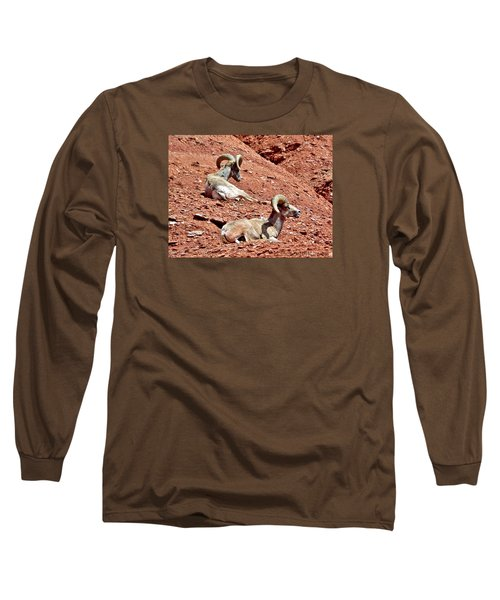 Desert Big Horn Sheep Capitol Reef National Park Utah Long Sleeve T-Shirt