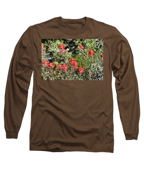 Desert Indian Paintbrush - Joshua Tree National Park Long Sleeve T-Shirt by Glenn McCarthy Art and Photography