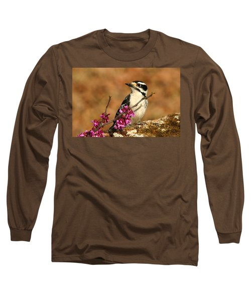 Downy Woodpecker In Spring Long Sleeve T-Shirt by Sheila Brown