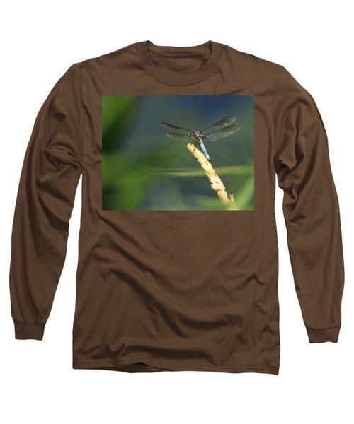 Dragonfly New York Long Sleeve T-Shirt by Bob Savage