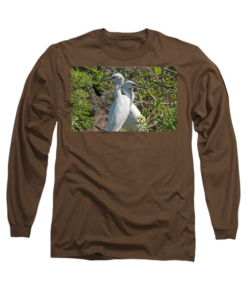 Dueling Egrets Long Sleeve T-Shirt by Kenneth Albin
