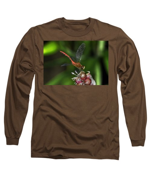 Eliza Skimmer Long Sleeve T-Shirt