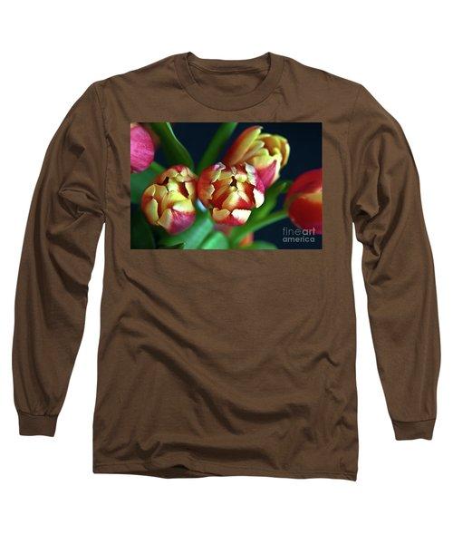 Eternal Sound Of Spring Long Sleeve T-Shirt