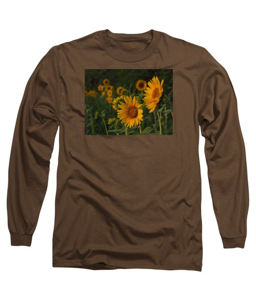 Evening Sunflowers Long Sleeve T-Shirt