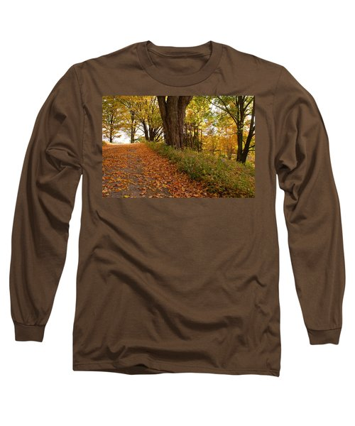 Fall Driveway Long Sleeve T-Shirt by Lois Lepisto