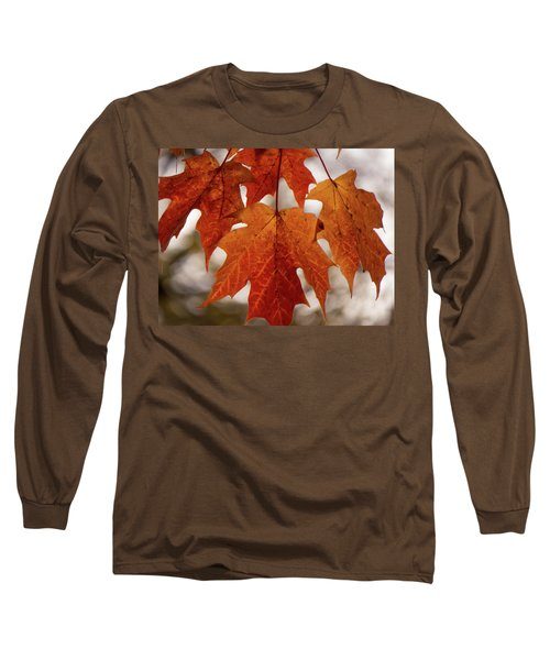 Long Sleeve T-Shirt featuring the photograph Fall Foliage by Kimberly Mackowski