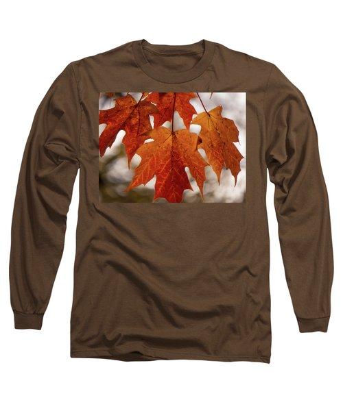 Fall Foliage Long Sleeve T-Shirt by Kimberly Mackowski