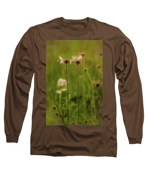 Field Of Flowers 3 Long Sleeve T-Shirt