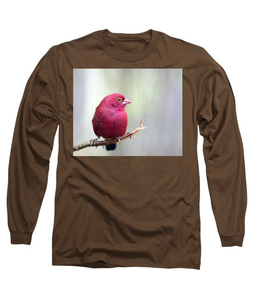 Fire Finch Long Sleeve T-Shirt by Marion Cullen