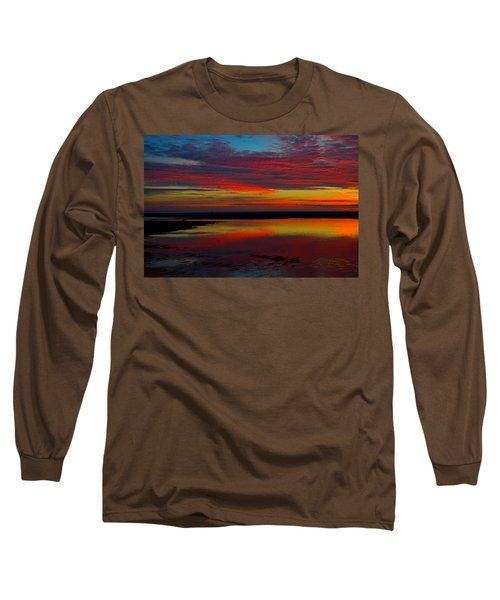 Fireworks From Nature Long Sleeve T-Shirt by Dianne Cowen