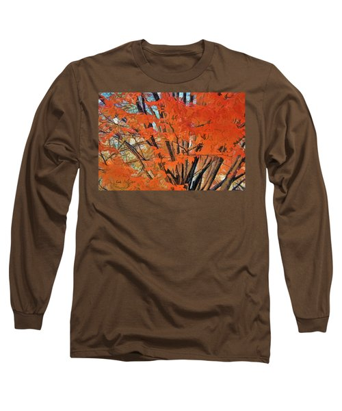 Flaming Fall Foliage Long Sleeve T-Shirt by Terry Cork