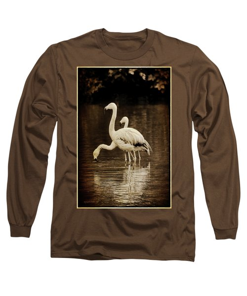 Flamingos Long Sleeve T-Shirt