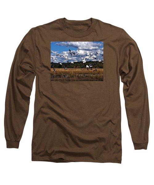 Long Sleeve T-Shirt featuring the photograph Flight by Karen Zuk Rosenblatt