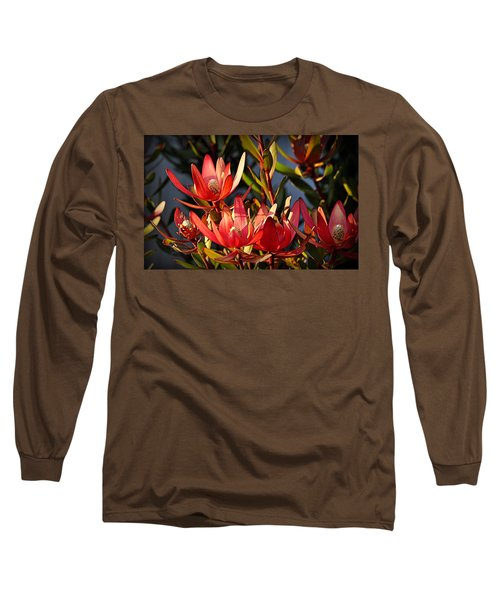 Long Sleeve T-Shirt featuring the photograph Flowers At Sunset by AJ Schibig
