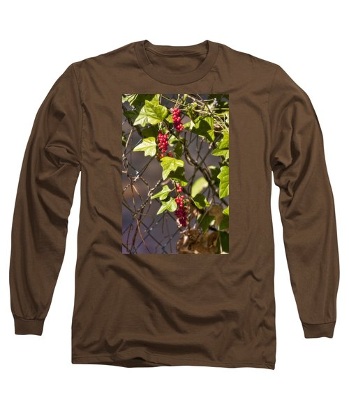 Long Sleeve T-Shirt featuring the photograph Fruits Of Autumn by Joan Bertucci