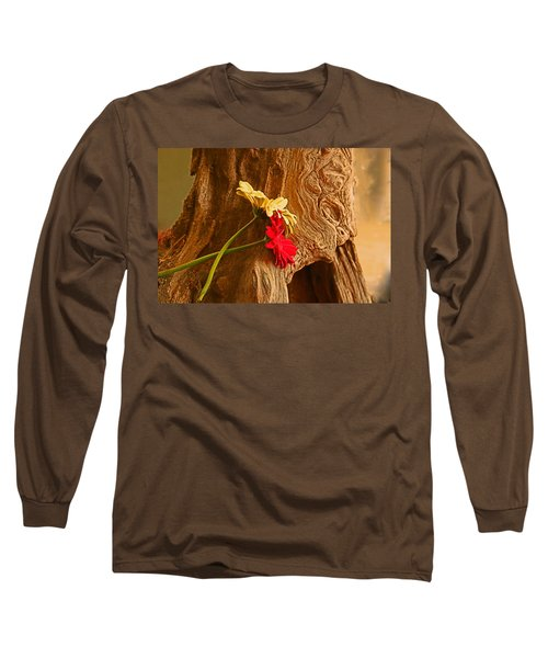 Gerber Daisy On Driftwod Long Sleeve T-Shirt by Ronald Olivier