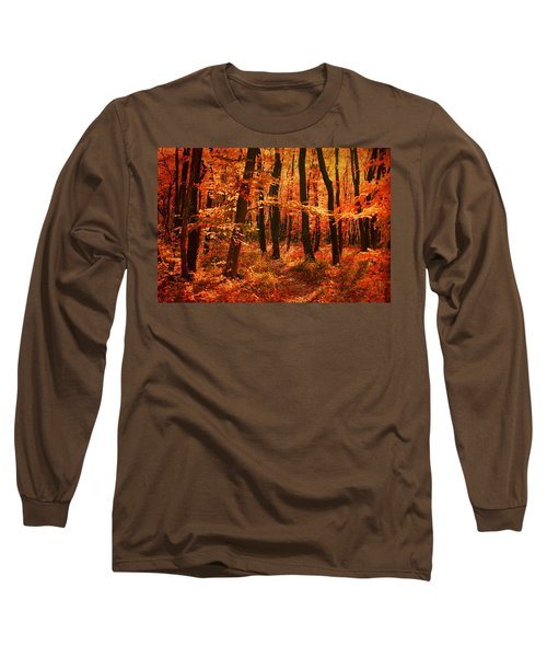 Golden Autumn Forest Long Sleeve T-Shirt by Gabriella Weninger - David