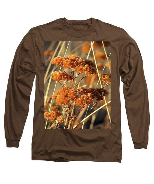 Golden Reach Long Sleeve T-Shirt