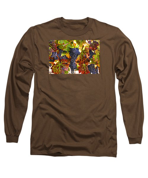 Grapes On Vine In Vineyards Long Sleeve T-Shirt by Garry Gay