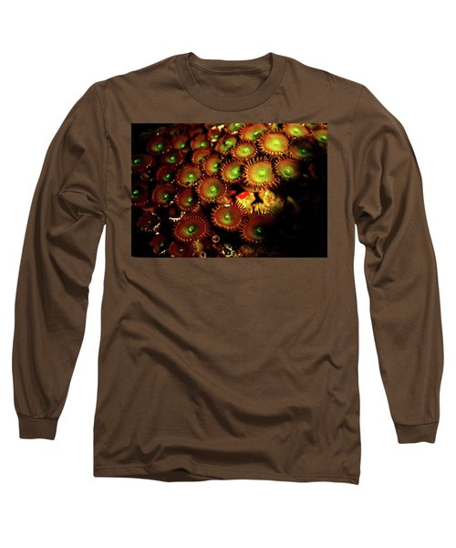 Long Sleeve T-Shirt featuring the photograph Green Button Polyps by Anthony Jones