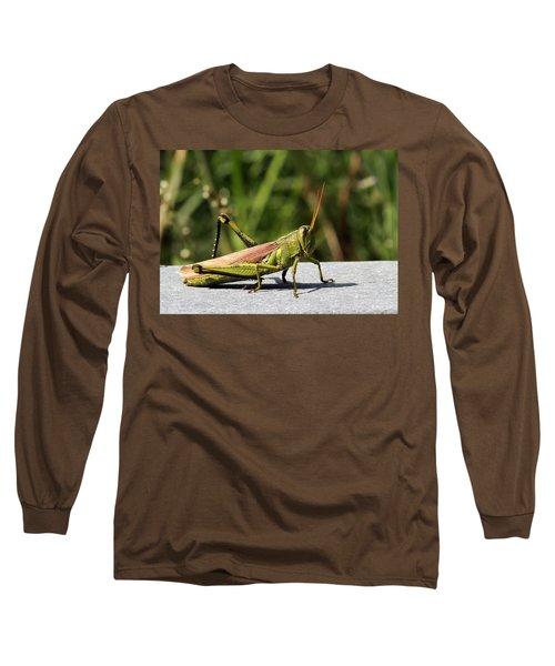Green Grasshopper Long Sleeve T-Shirt