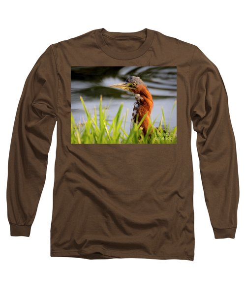Green Heron Closeup  Long Sleeve T-Shirt