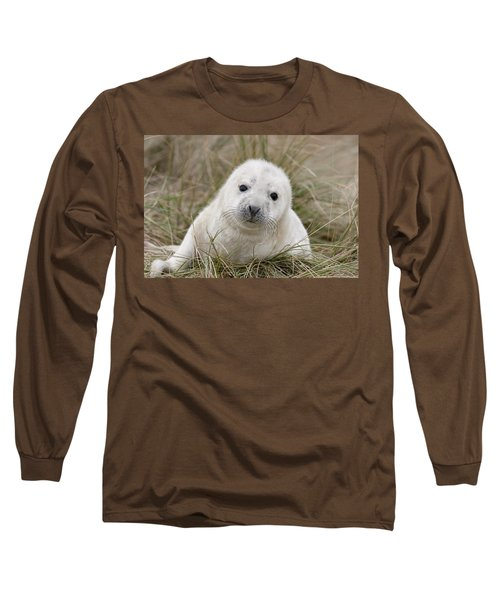 Grey Seal Pup Long Sleeve T-Shirt