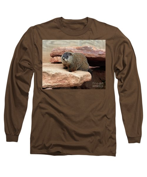 Groundhog Long Sleeve T-Shirt by Louise Heusinkveld