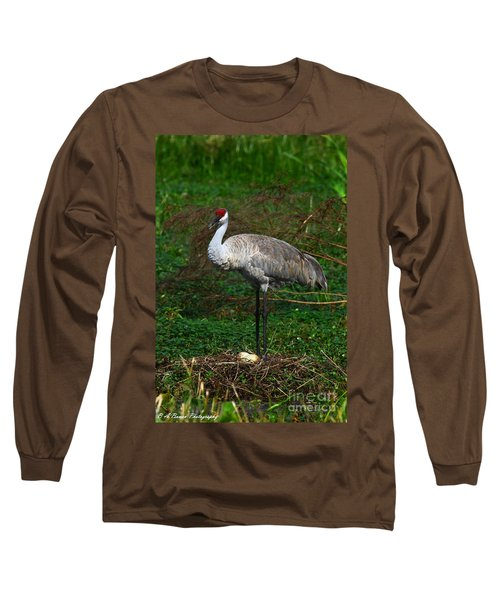 Guarding The Nest Long Sleeve T-Shirt