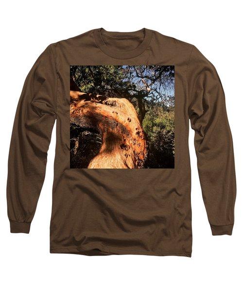 Hard Wood Long Sleeve T-Shirt
