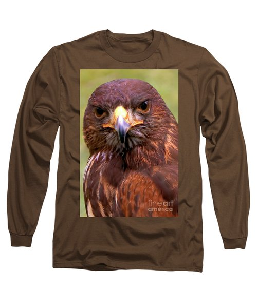 Harris Hawk Portriat Long Sleeve T-Shirt by Stephen Melia