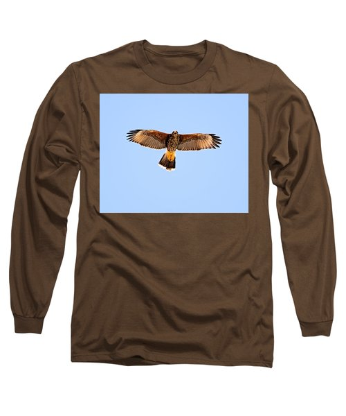 Long Sleeve T-Shirt featuring the photograph Harris's Hawk H36 by Mark Myhaver