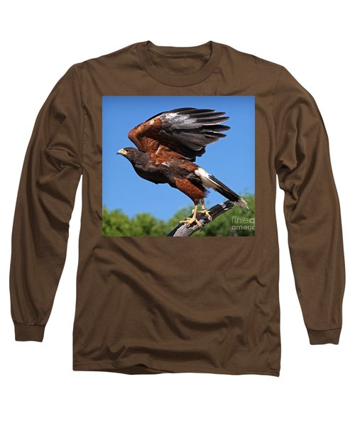 Long Sleeve T-Shirt featuring the photograph Harris's Hawk by Martin Konopacki