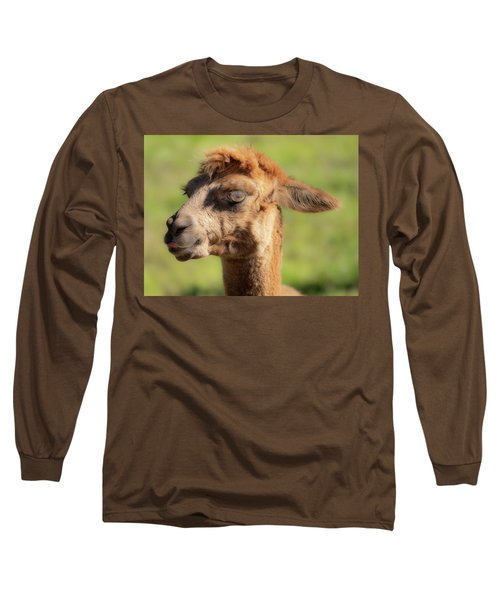 Hello Darling Long Sleeve T-Shirt