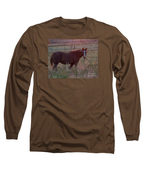 Horses 2 Long Sleeve T-Shirt