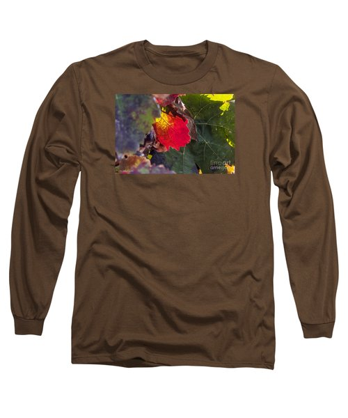 Hot Autumn Colors In The Vineyard Long Sleeve T-Shirt by Arik Baltinester