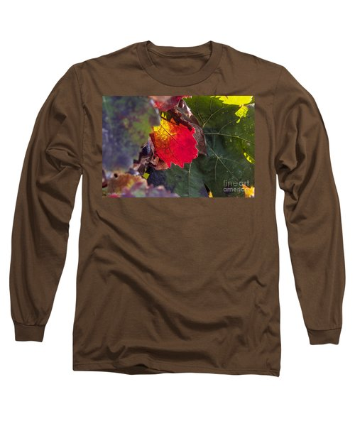 Long Sleeve T-Shirt featuring the photograph Hot Autumn Colors In The Vineyard by Arik Baltinester