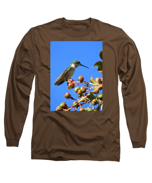 Long Sleeve T-Shirt featuring the photograph Hummingbird Watch by Phyllis Beiser