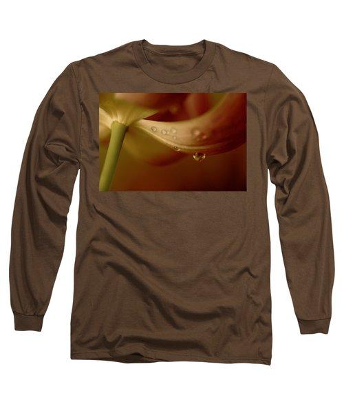I Think It Sings Long Sleeve T-Shirt