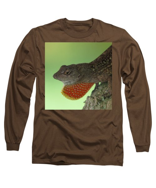 I'll Show You Long Sleeve T-Shirt