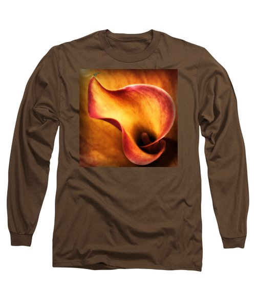 I'm Hot Long Sleeve T-Shirt by Gabriella Weninger - David