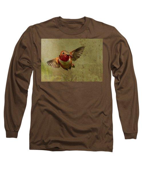 In Flight 2 Long Sleeve T-Shirt