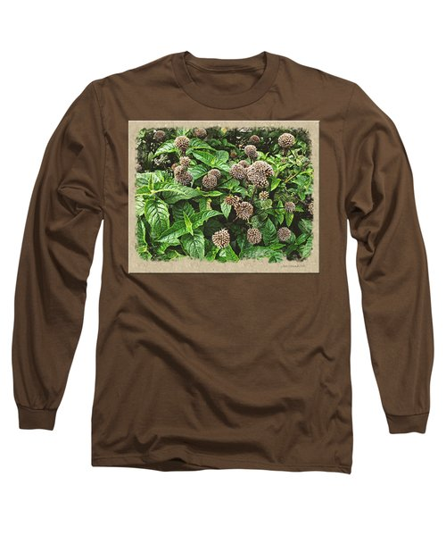 Long Sleeve T-Shirt featuring the photograph In The Highline Garden by Joan  Minchak