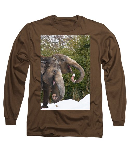 Indian Elephants Eating Snow Long Sleeve T-Shirt