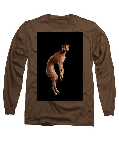 Italian Greyhound Dog Jumping, Hangs In Air, Looking Camera Isolated Long Sleeve T-Shirt