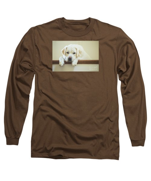 Labrador Retriever On The Stairs Long Sleeve T-Shirt by Diane Diederich