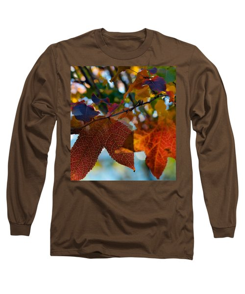 Late Autumn Colors Long Sleeve T-Shirt by Stephen Anderson