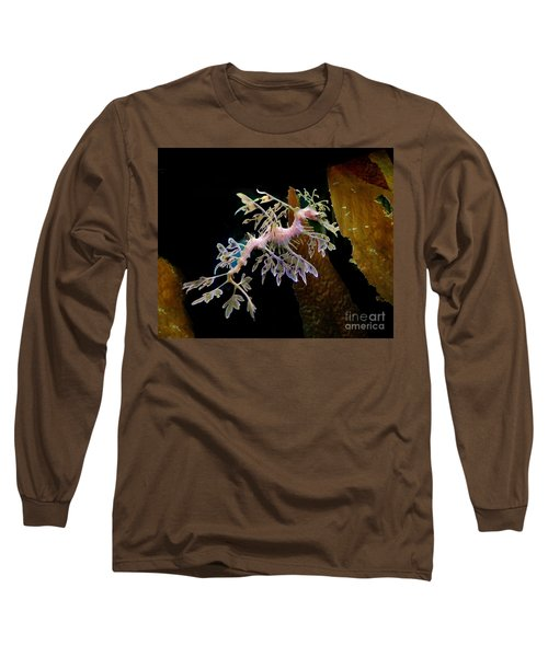 Leafy Sea Dragon Long Sleeve T-Shirt