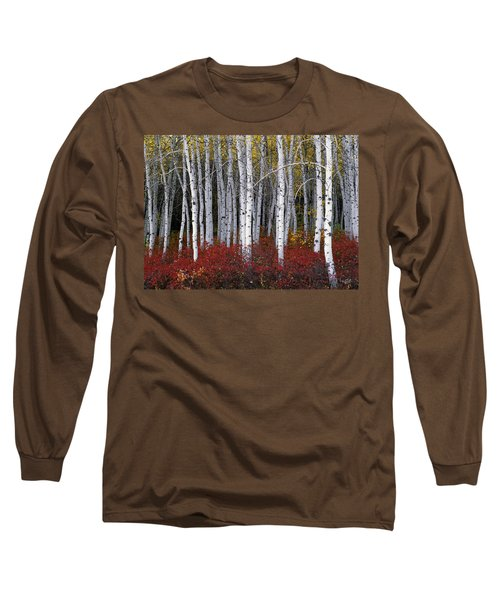 Light In Forest Long Sleeve T-Shirt