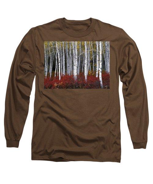 Light In Forest Long Sleeve T-Shirt by Leland D Howard